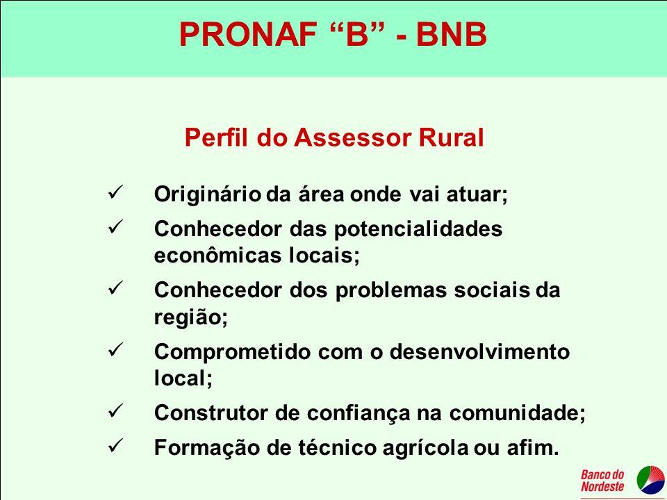 Perfil do Assessor Rural
