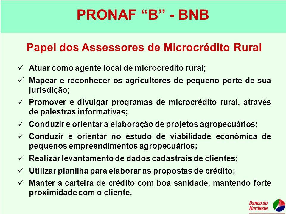 Papel dos Assessores de Microcrédito Rural