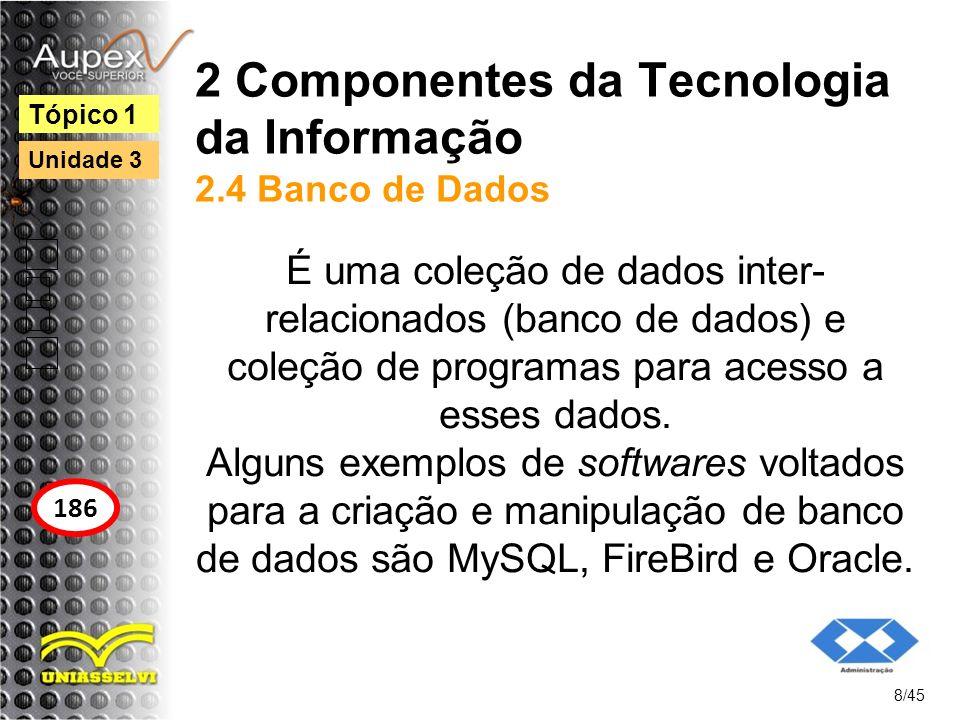 2 Componentes da Tecnologia da Informação 2.4 Banco de Dados