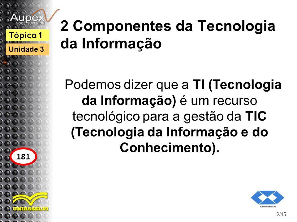 2 Componentes da Tecnologia da Informação
