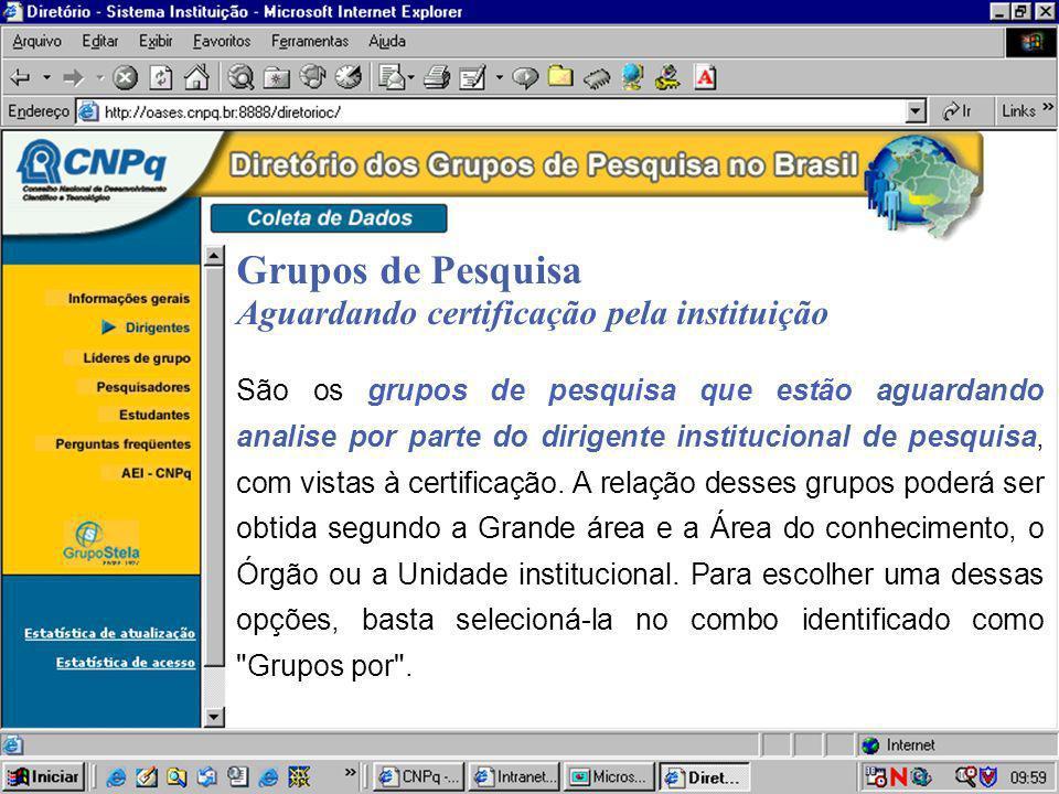 Grupos de Pesquisa Aguardando certificação pela instituição