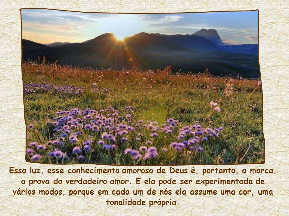 Essa luz, esse conhecimento amoroso de Deus é, portanto, a marca, a prova do verdadeiro amor.