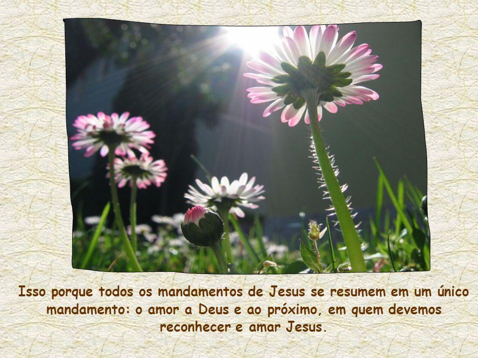 Isso porque todos os mandamentos de Jesus se resumem em um único mandamento: o amor a Deus e ao próximo, em quem devemos reconhecer e amar Jesus.