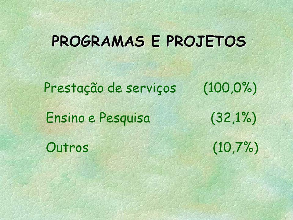 PROGRAMAS E PROJETOS Prestação de serviços (100,0%)