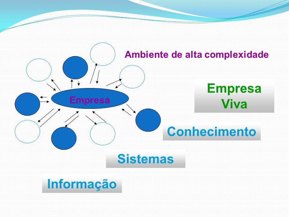 Empresa Viva Conhecimento Sistemas Informação