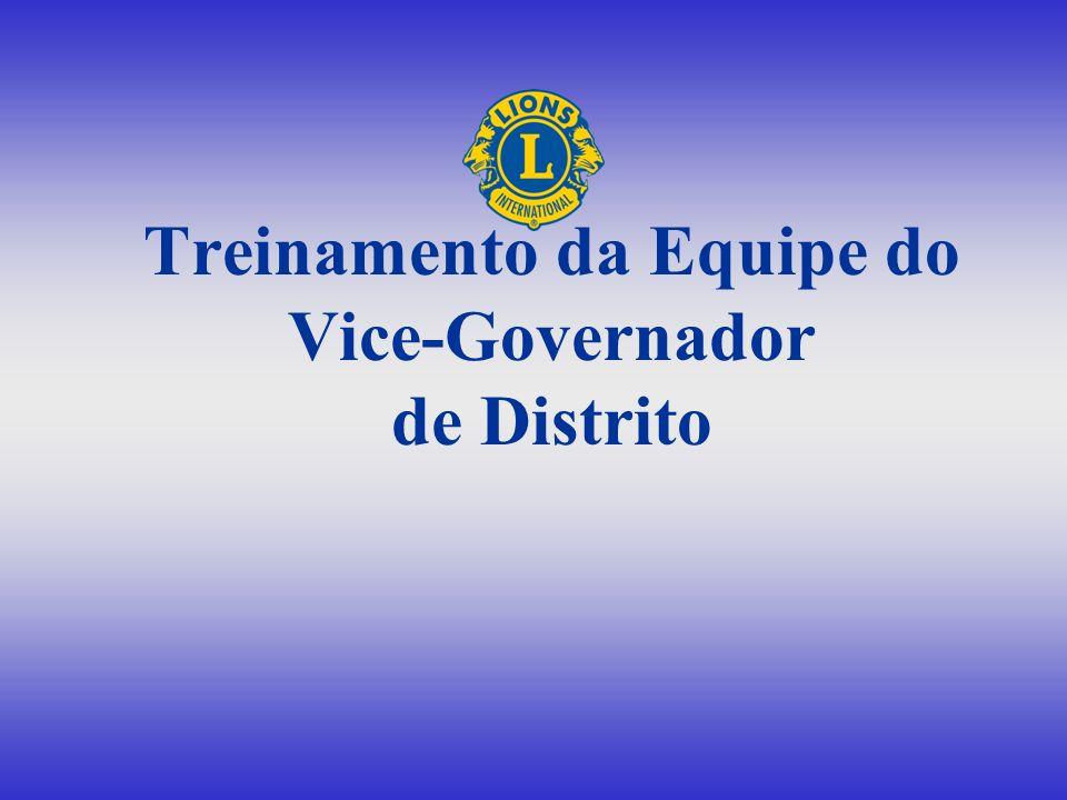 Treinamento da Equipe do Vice-Governador de Distrito