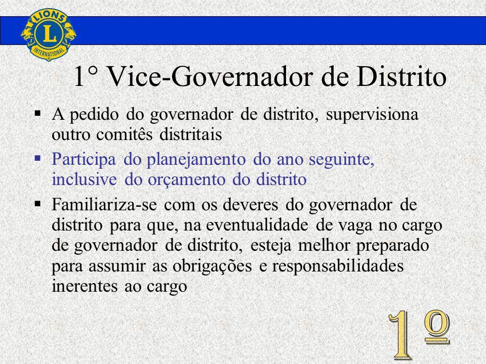 1° Vice-Governador de Distrito