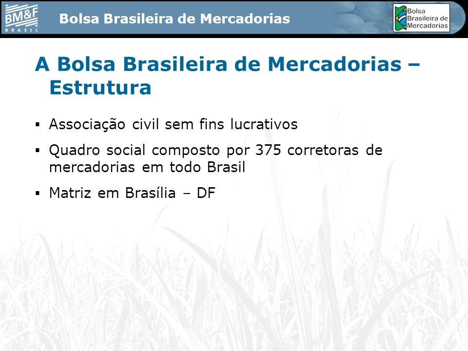 A Bolsa Brasileira de Mercadorias – Estrutura