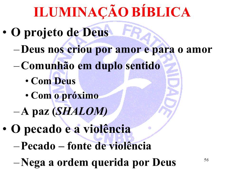 ILUMINAÇÃO BÍBLICA O projeto de Deus O pecado e a violência