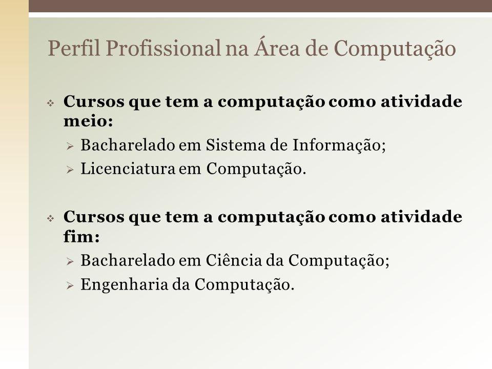 Perfil Profissional na Área de Computação
