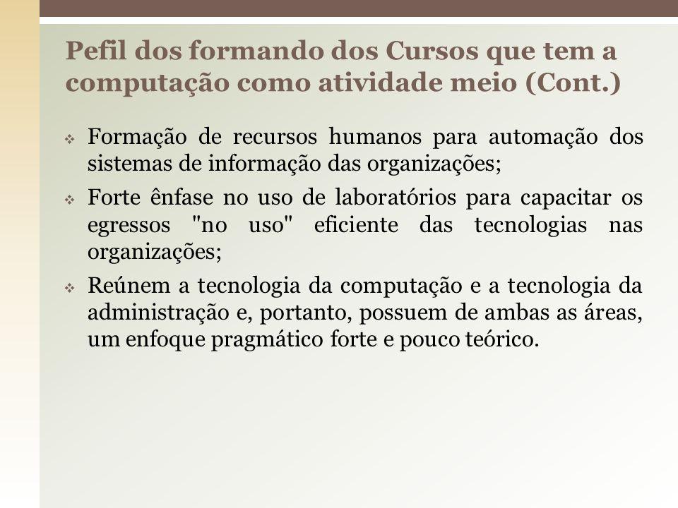 Pefil dos formando dos Cursos que tem a computação como atividade meio (Cont.)
