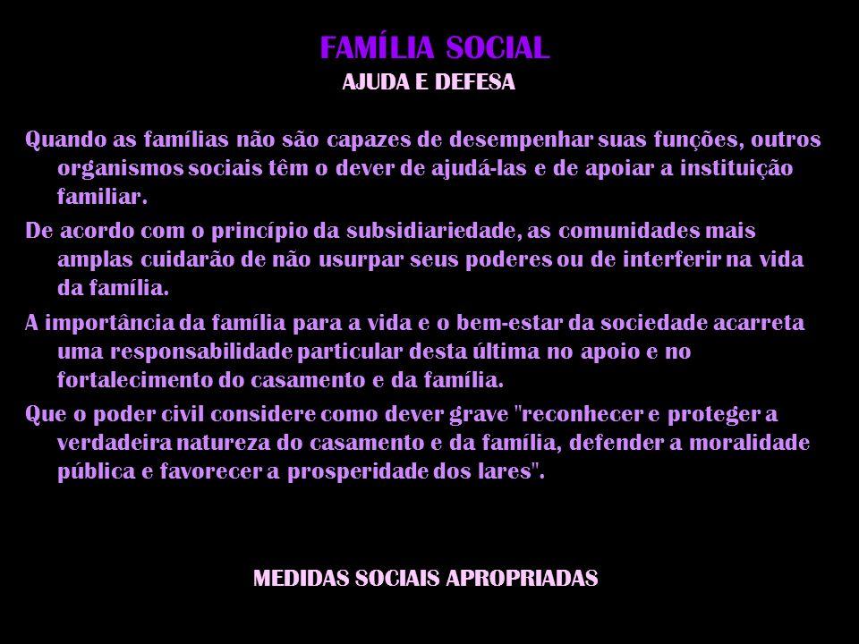 FAMÍLIA SOCIAL AJUDA E DEFESA
