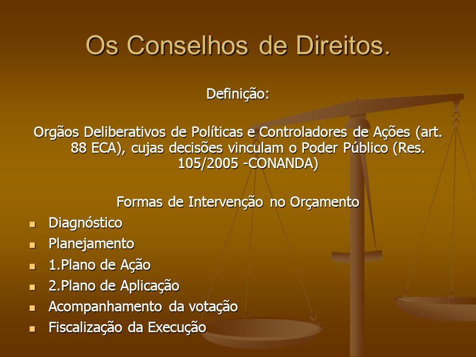 Os Conselhos de Direitos.