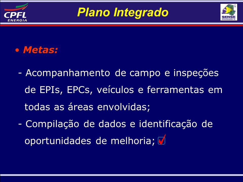 Plano Integrado Metas: - Acompanhamento de campo e inspeções