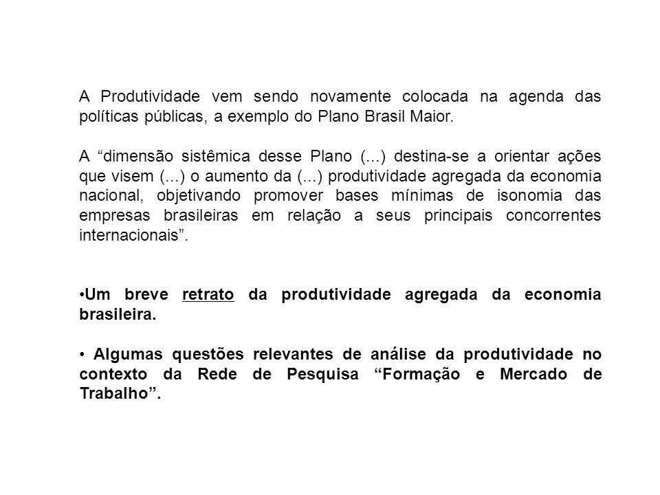 A Produtividade vem sendo novamente colocada na agenda das políticas públicas, a exemplo do Plano Brasil Maior.