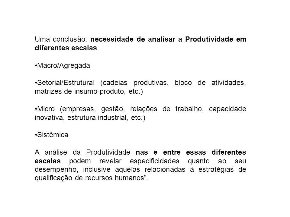 Uma conclusão: necessidade de analisar a Produtividade em diferentes escalas