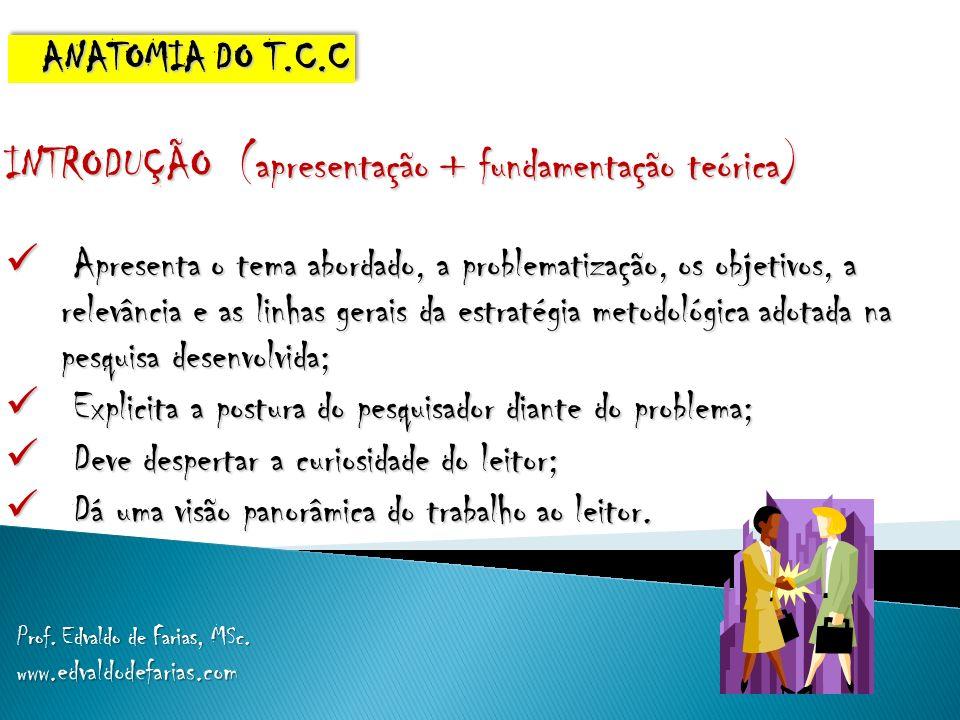 INTRODUÇÃO (apresentação + fundamentação teórica)