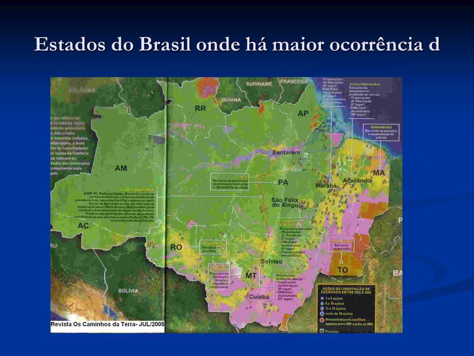 Estados do Brasil onde há maior ocorrência d