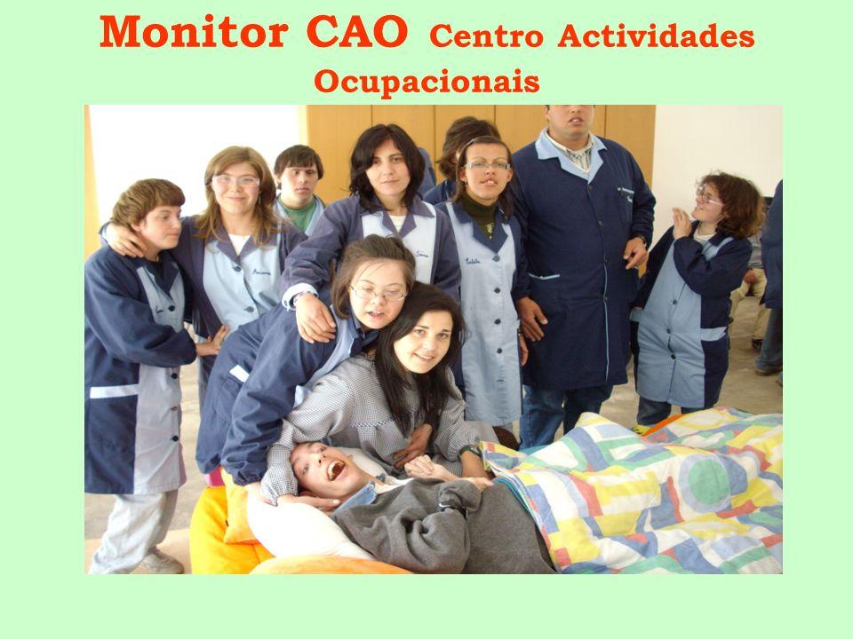 Monitor CAO Centro Actividades Ocupacionais