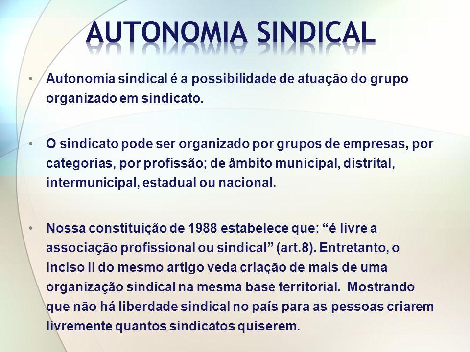 AUTONOMIA SINDICAL Autonomia sindical é a possibilidade de atuação do grupo organizado em sindicato.