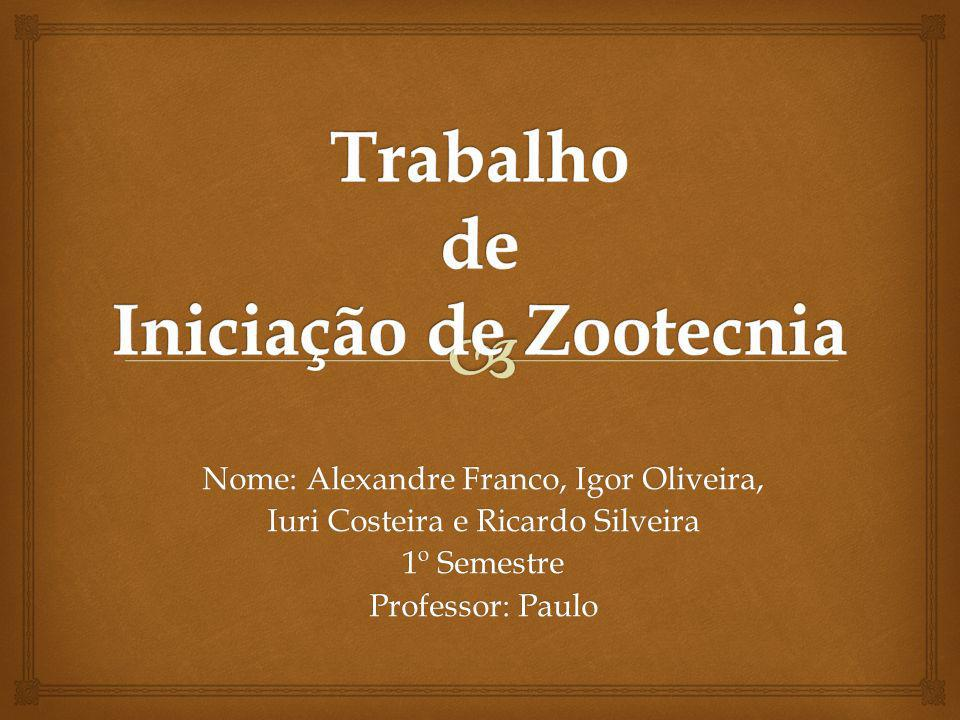 Trabalho de Iniciação de Zootecnia