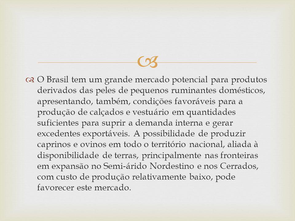 O Brasil tem um grande mercado potencial para produtos derivados das peles de pequenos ruminantes domésticos, apresentando, também, condições favoráveis para a produção de calçados e vestuário em quantidades suficientes para suprir a demanda interna e gerar excedentes exportáveis.