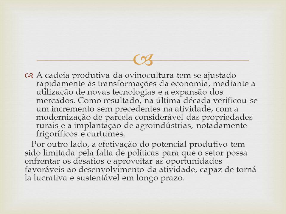 A cadeia produtiva da ovinocultura tem se ajustado rapidamente às transformações da economia, mediante a utilização de novas tecnologias e a expansão dos mercados. Como resultado, na última década verificou-se um incremento sem precedentes na atividade, com a modernização de parcela considerável das propriedades rurais e a implantação de agroindústrias, notadamente frigoríficos e curtumes.