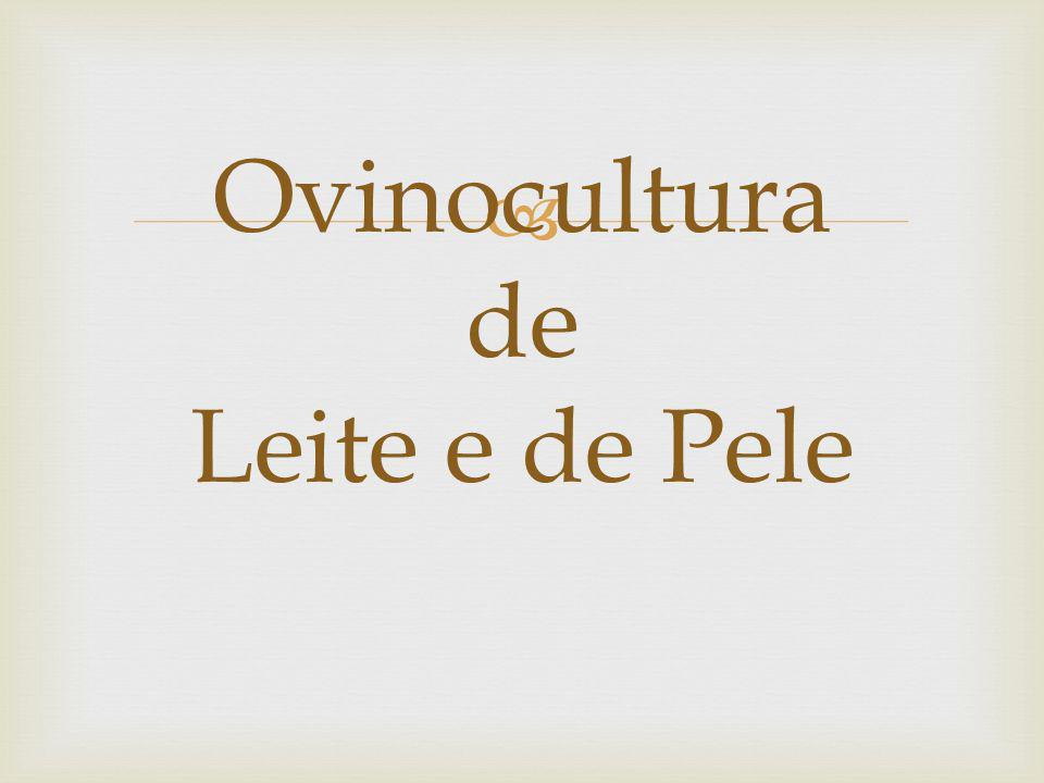 Ovinocultura de Leite e de Pele