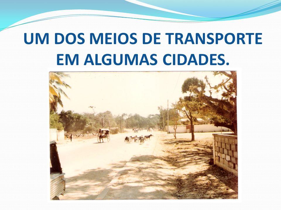 UM DOS MEIOS DE TRANSPORTE EM ALGUMAS CIDADES.