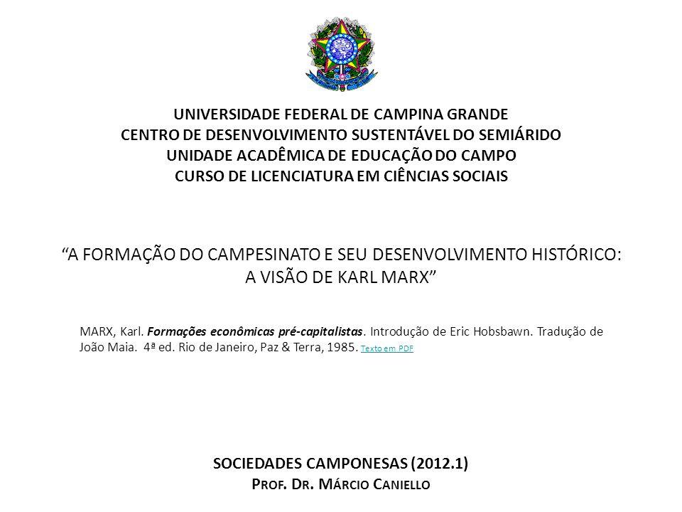 A Formação do Campesinato e seu Desenvolvimento Histórico: