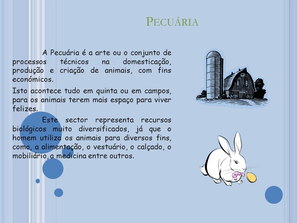 Pecuária A Pecuária é a arte ou o conjunto de processos técnicos na domesticação, produção e criação de animais, com fins económicos.
