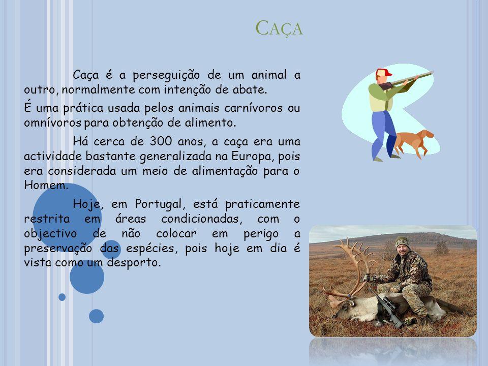 Caça Caça é a perseguição de um animal a outro, normalmente com intenção de abate.
