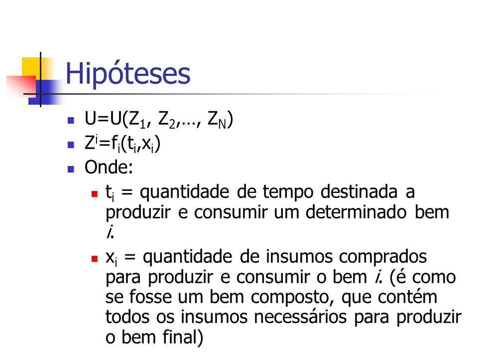 Hipóteses U=U(Z1, Z2,…, ZN) Zi=fi(ti,xi) Onde: