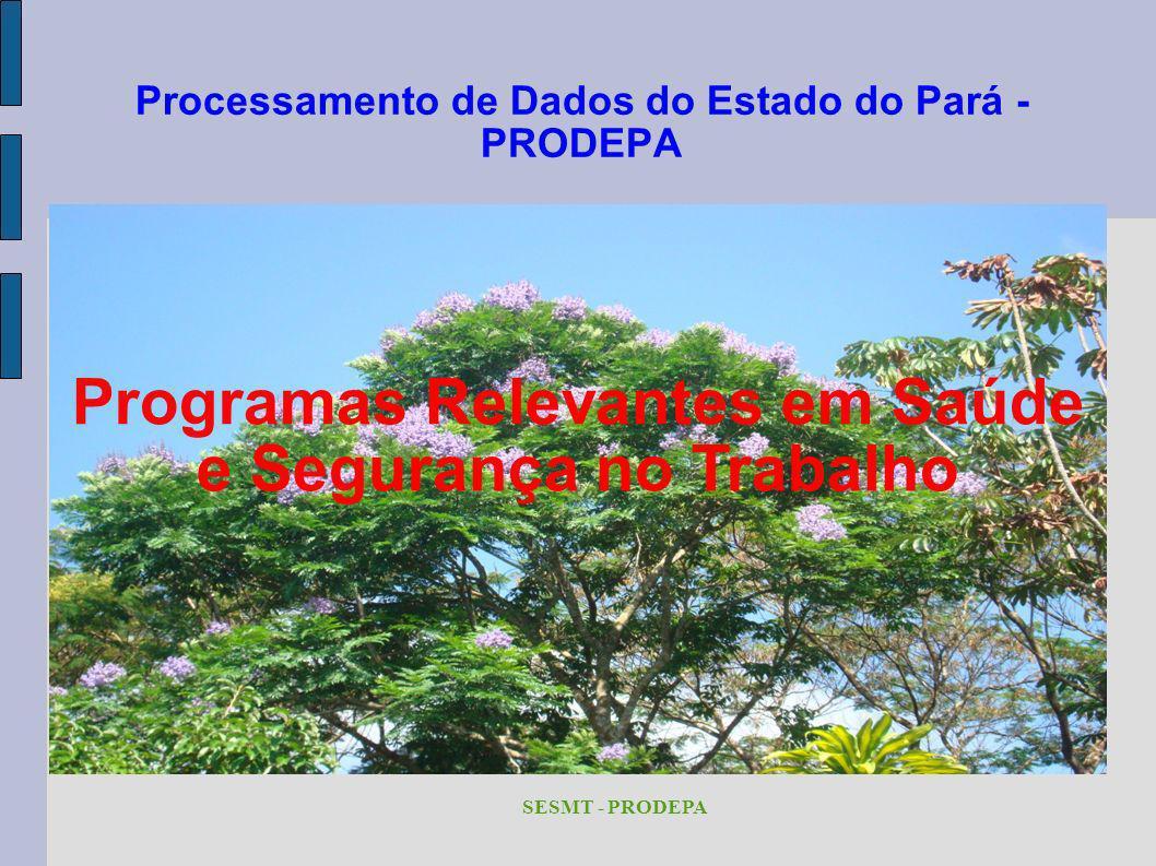 Processamento de Dados do Estado do Pará - PRODEPA