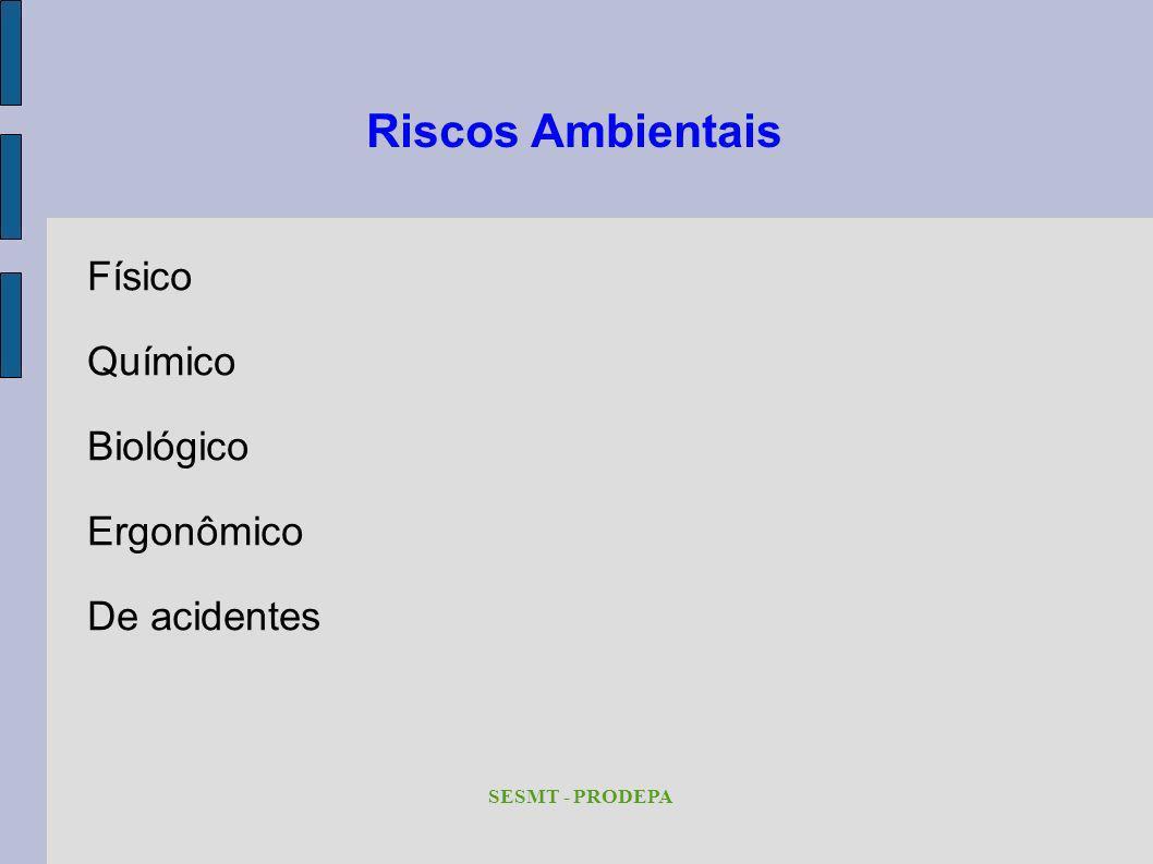 Riscos Ambientais Físico Químico Biológico Ergonômico De acidentes