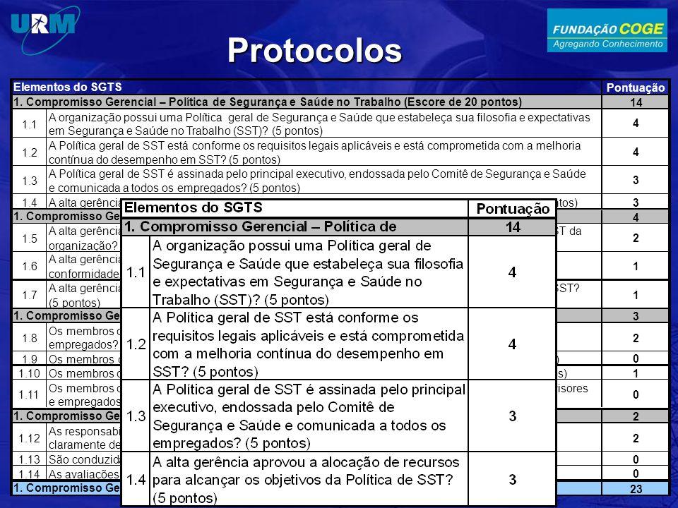 Protocolos Pontuação 14 1.1 A organização possui uma Política