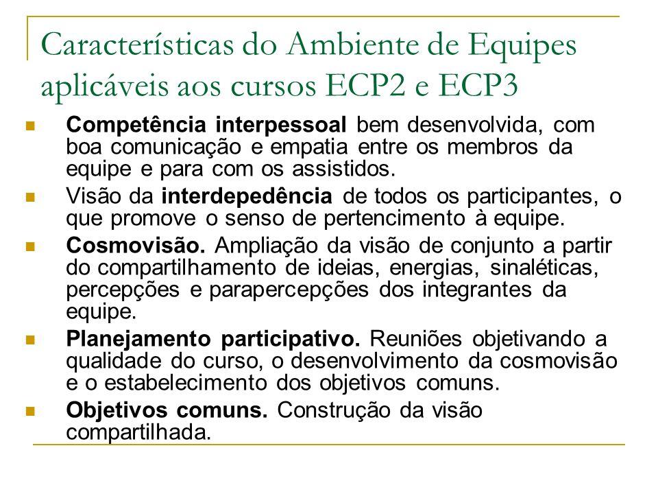 Características do Ambiente de Equipes aplicáveis aos cursos ECP2 e ECP3
