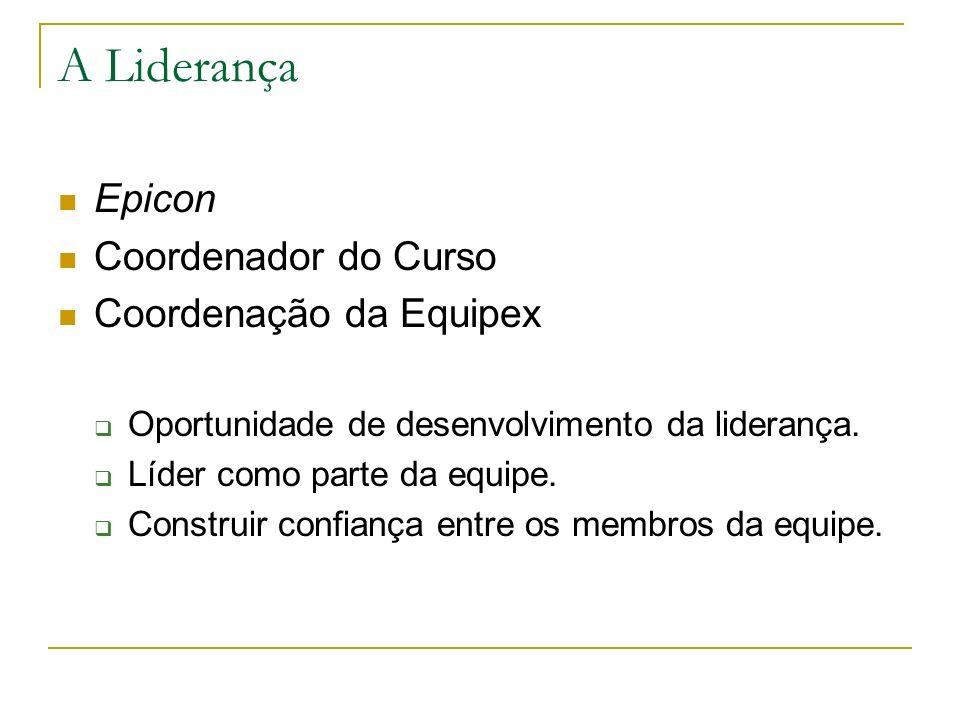 A Liderança Epicon Coordenador do Curso Coordenação da Equipex