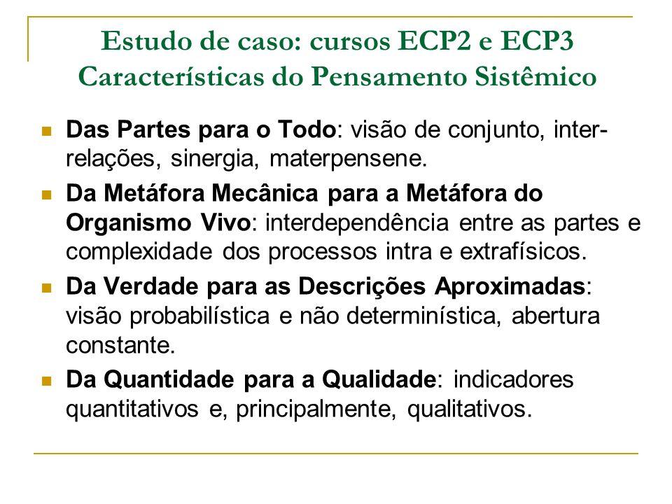 Estudo de caso: cursos ECP2 e ECP3 Características do Pensamento Sistêmico