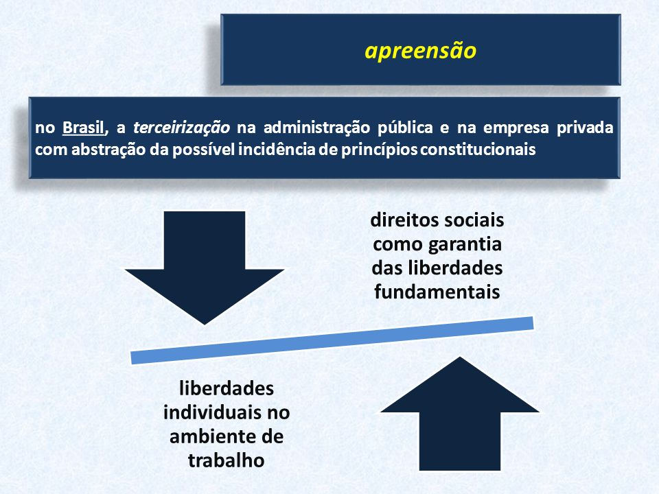 apreensão no Brasil, a terceirização na administração pública e na empresa privada com abstração da possível incidência de princípios constitucionais.