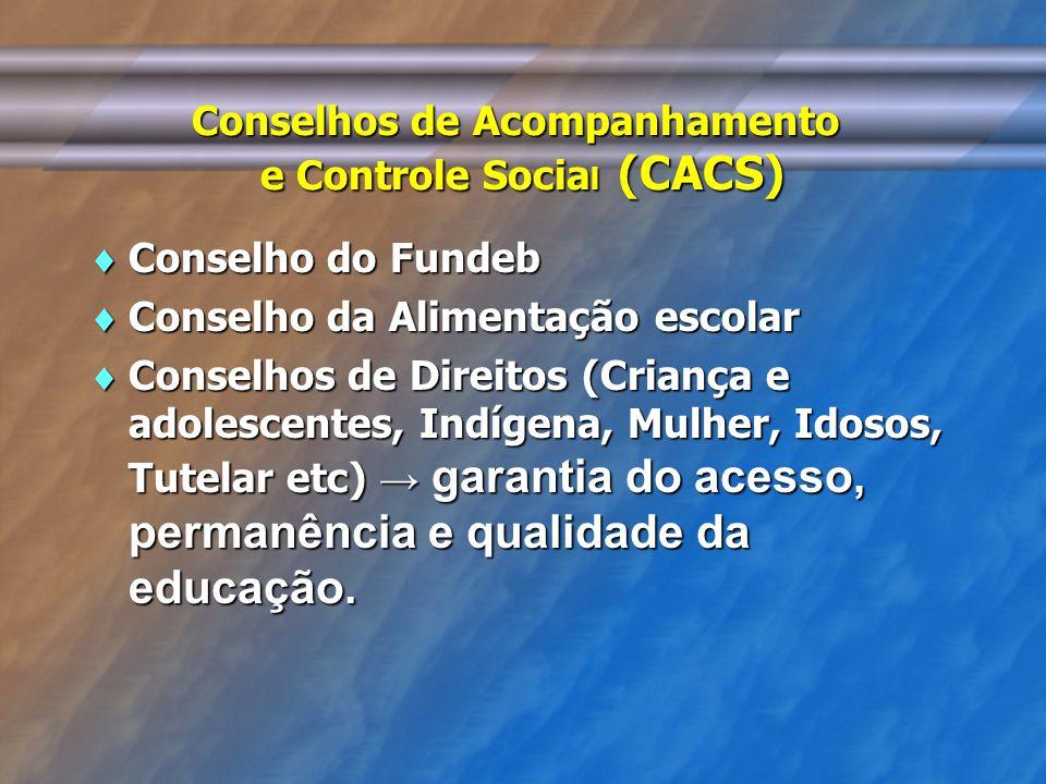 Conselhos de Acompanhamento e Controle Social (CACS)
