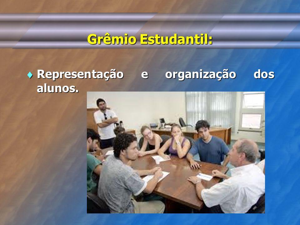 Grêmio Estudantil: Representação e organização dos alunos.
