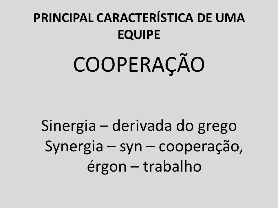 PRINCIPAL CARACTERÍSTICA DE UMA EQUIPE