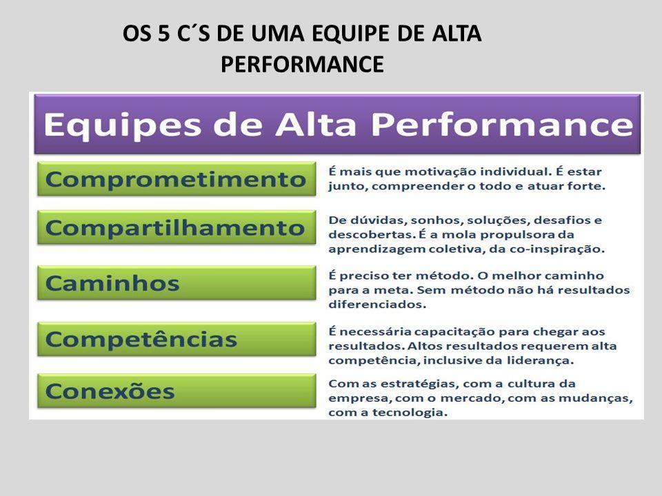 OS 5 C´S DE UMA EQUIPE DE ALTA PERFORMANCE