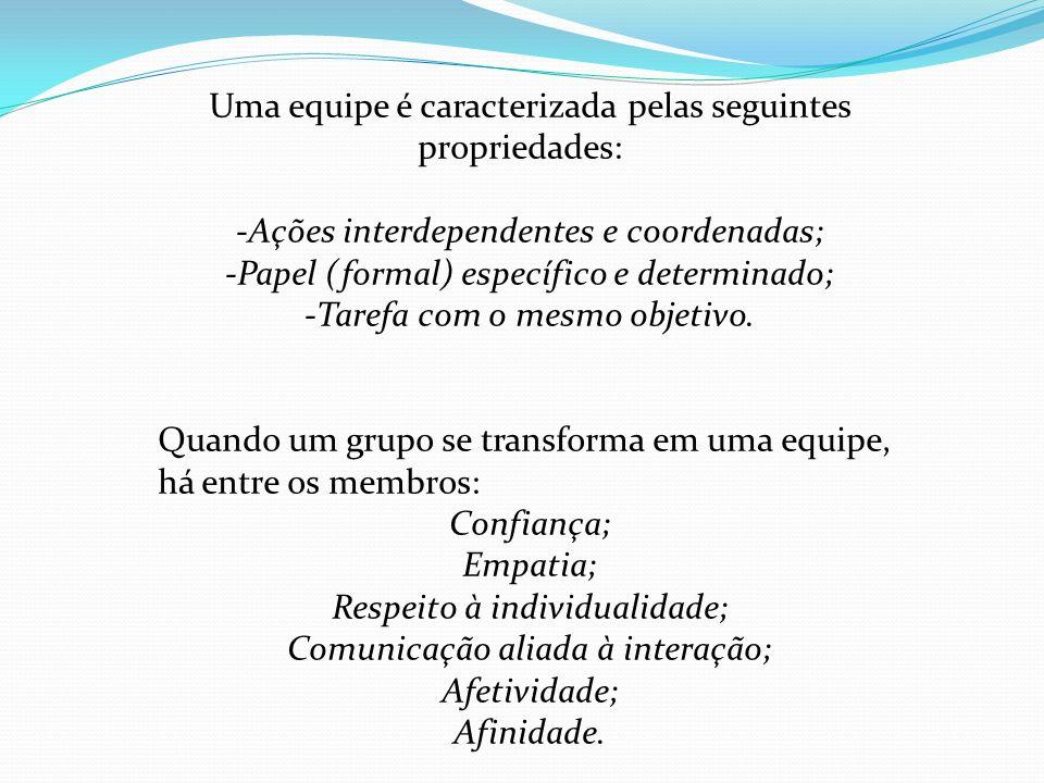Uma equipe é caracterizada pelas seguintes propriedades: