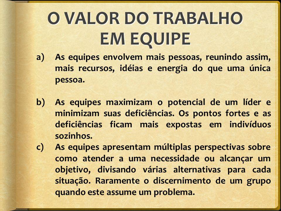 O VALOR DO TRABALHO EM EQUIPE
