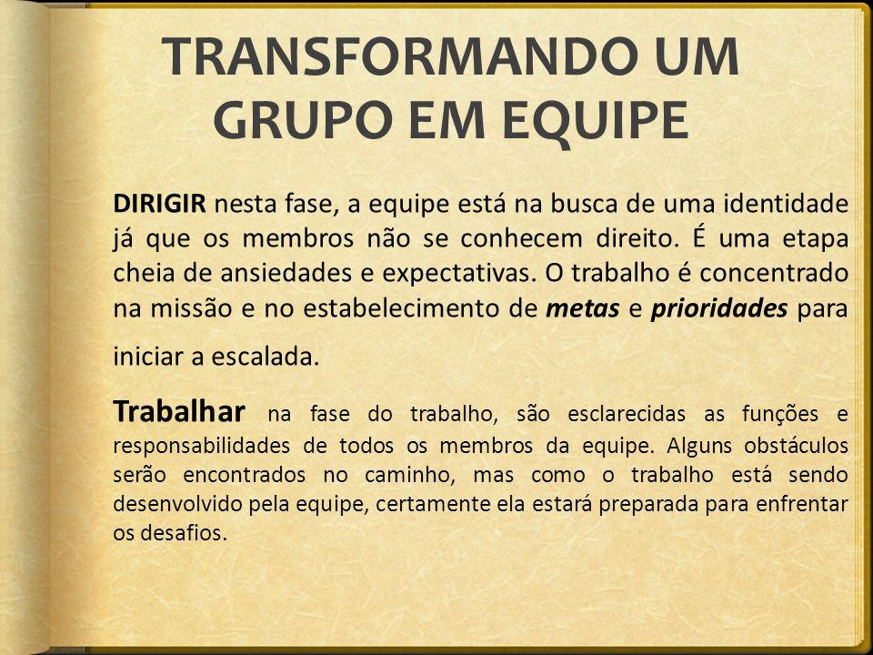 TRANSFORMANDO UM GRUPO EM EQUIPE