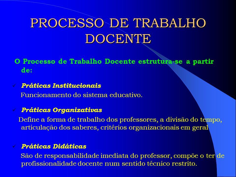 PROCESSO DE TRABALHO DOCENTE