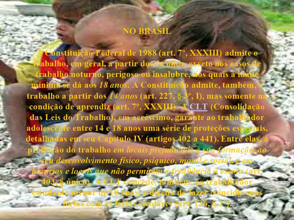 NO BRASIL A Constituição Federal de 1988 (art
