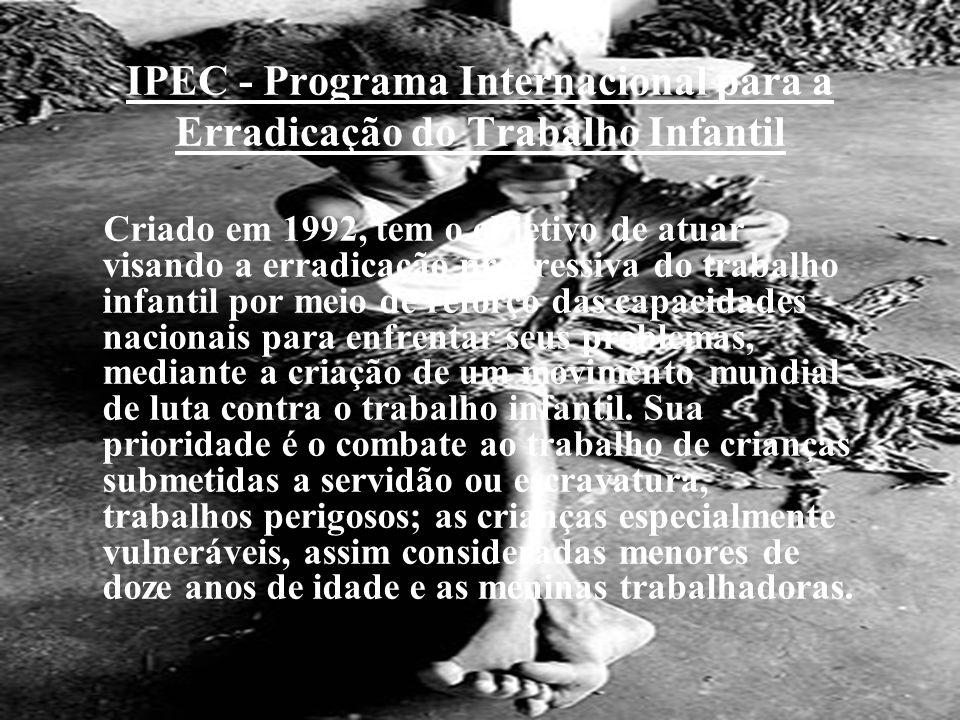 IPEC - Programa Internacional para a Erradicação do Trabalho Infantil